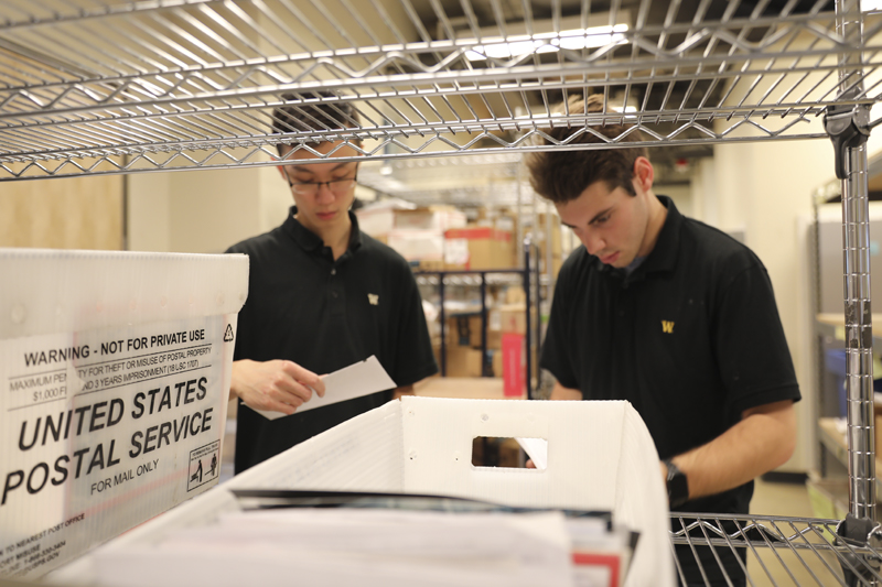 Student employees sorting mail