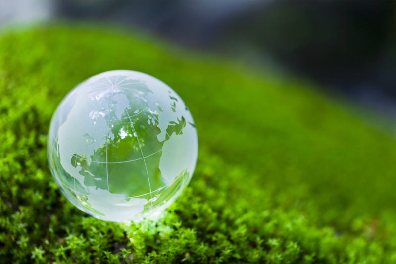 Clear glass globe on bright green moss