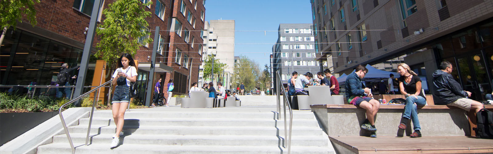 Students outside in the Maple Hall and Lander Hall courtyard